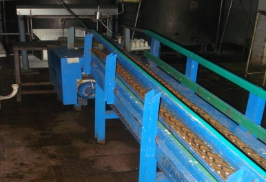 ms-chain-conveyor